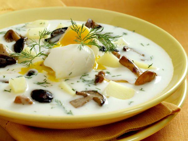 Грибной суп из опят - рецепт