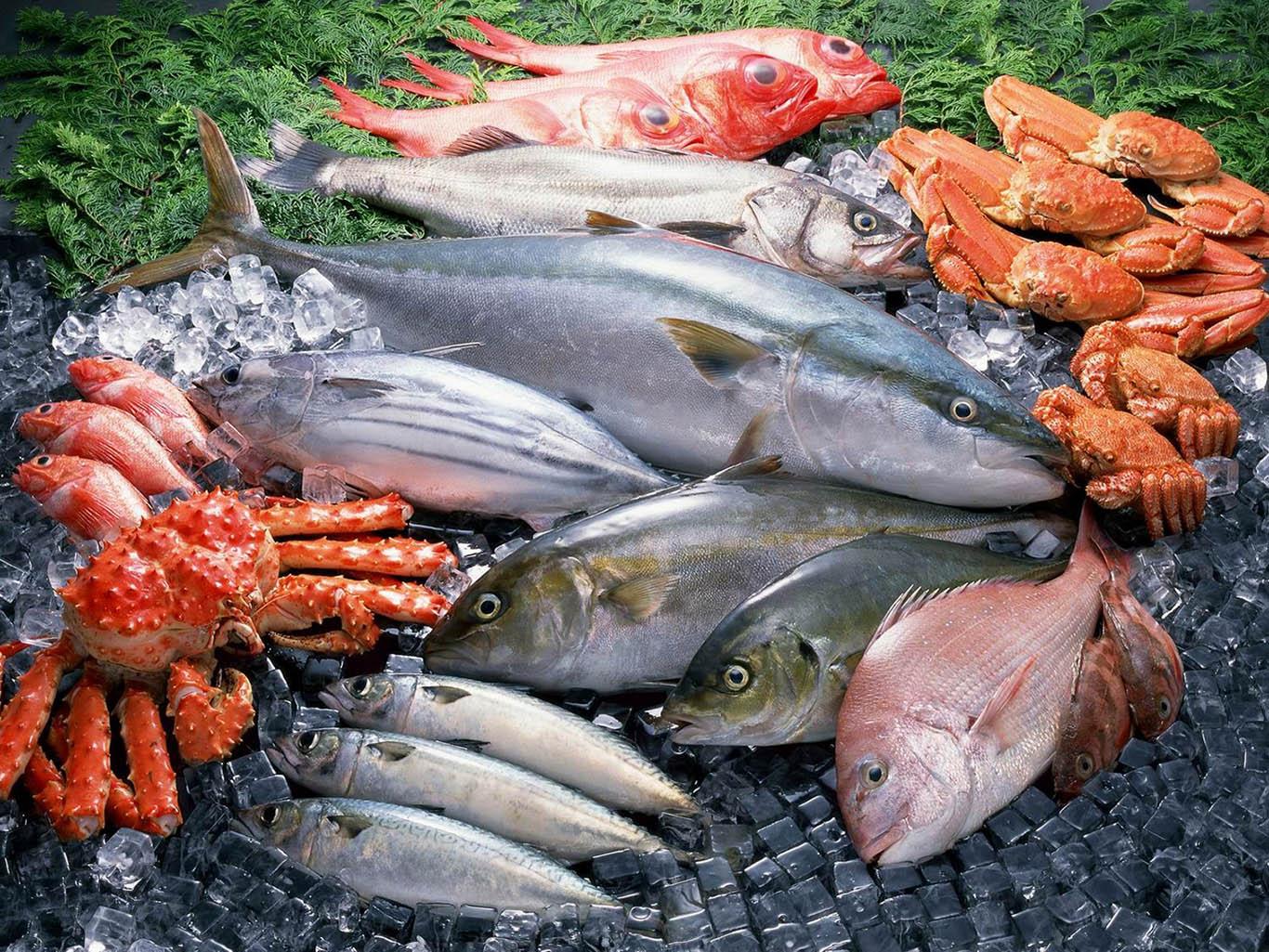 свежей и свежемороженой рыбы