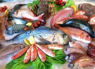 Быстрая покупка высококачественной рыбы и морепродуктов